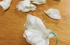 布花 スイートピー 薔薇 ローズ ブライダルブーケ ウェディング レッスン 神戸 フラワーアンジェリク